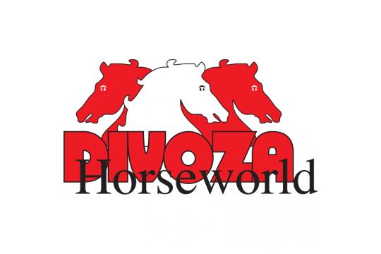 Divoza Horseworld Leek